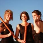 Elb an Flutes 2