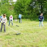 NABU Wiesenfest – Mit der Sense Lebensräume für Insekten schaffen